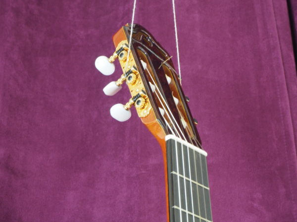 Dieter Hopf luthier progresso classical double-top guitar