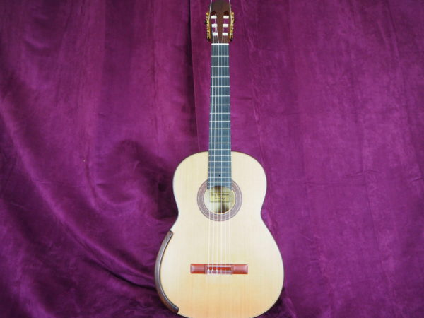 greg smallman & sons 2015 classical guitar luthier lattice