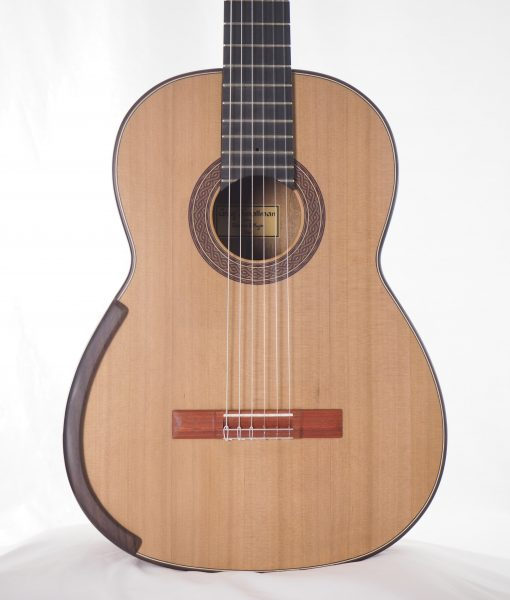 Greg Smallman & sons luthier classical lattice guitar