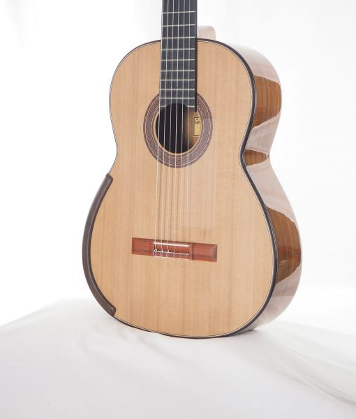 Greg Smallman & sons classical luthier lattice guitar