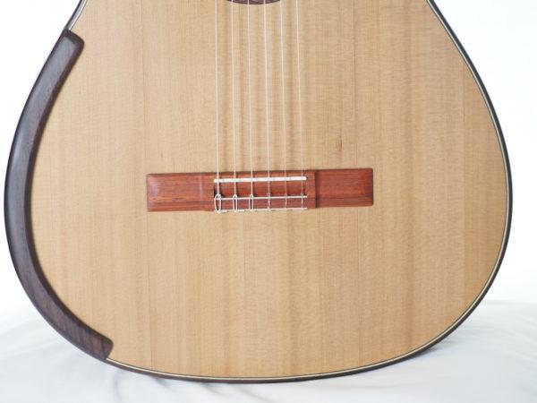 Greg Smallman & sons classical luthier lattice bracing  guitar