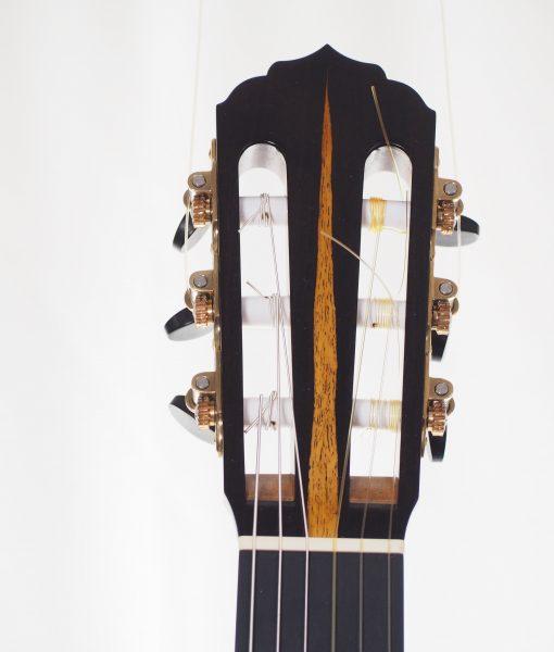 classical guitar reza safavian