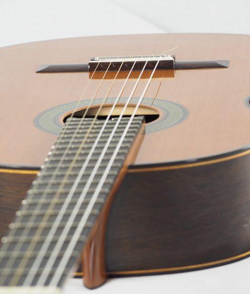 classical guitar du luthier reza safavian