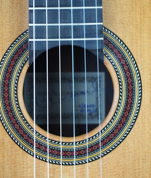 Giannis Palaiodimopoulos classical guitar