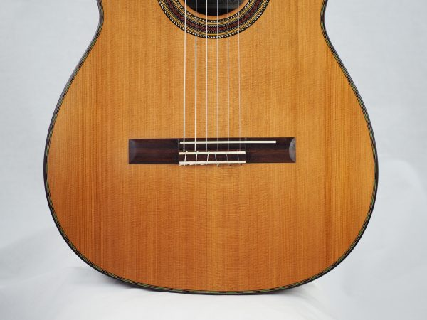 Giannis Palaiodimopoulos classical guitar 17PAL254-09
