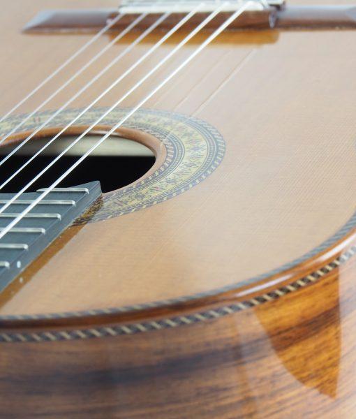 Luthier Dieter Hopf Portentosa Evolucion