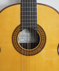 dieter Hopf classical double-table guitar progresso