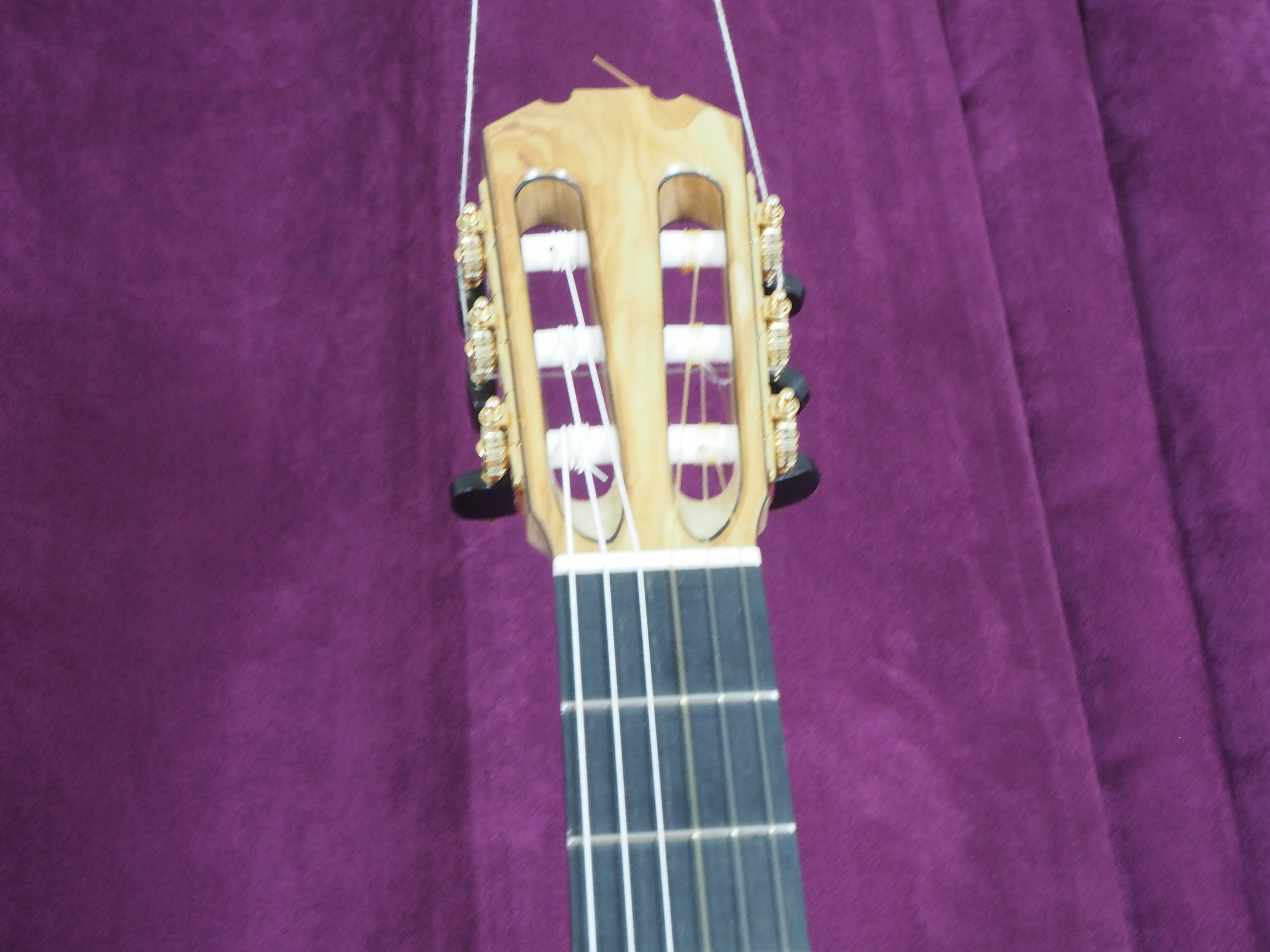 Guitare classical Paul Sheridan
