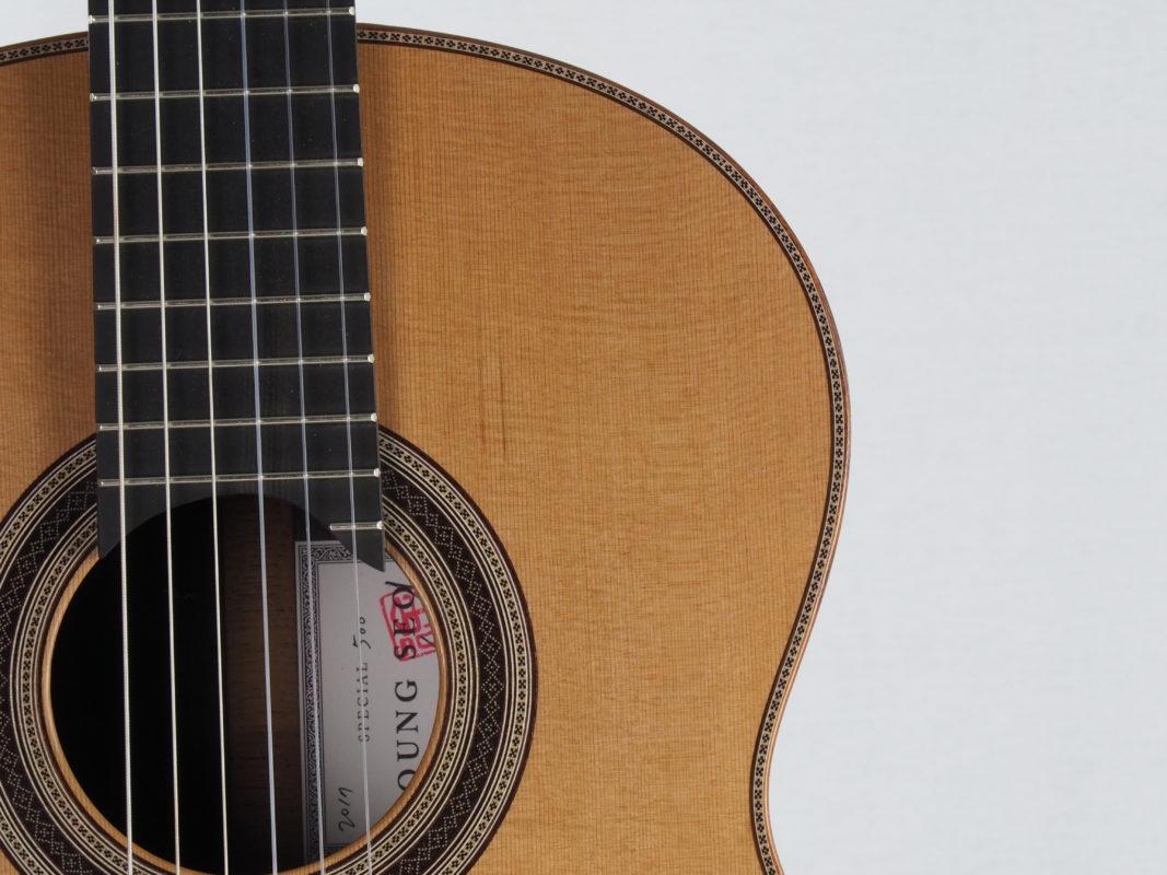 Young seo guitar