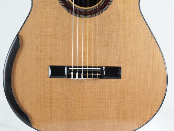 Luthier Kim Lissarrague No 306 lattice classical guitar - 05